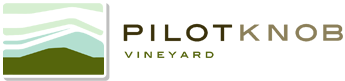 Pilotknob_vineyard_logo