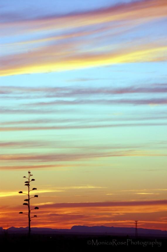 del rio sunset